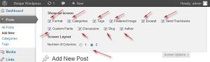 post editor screen options