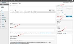 post editor wordpress
